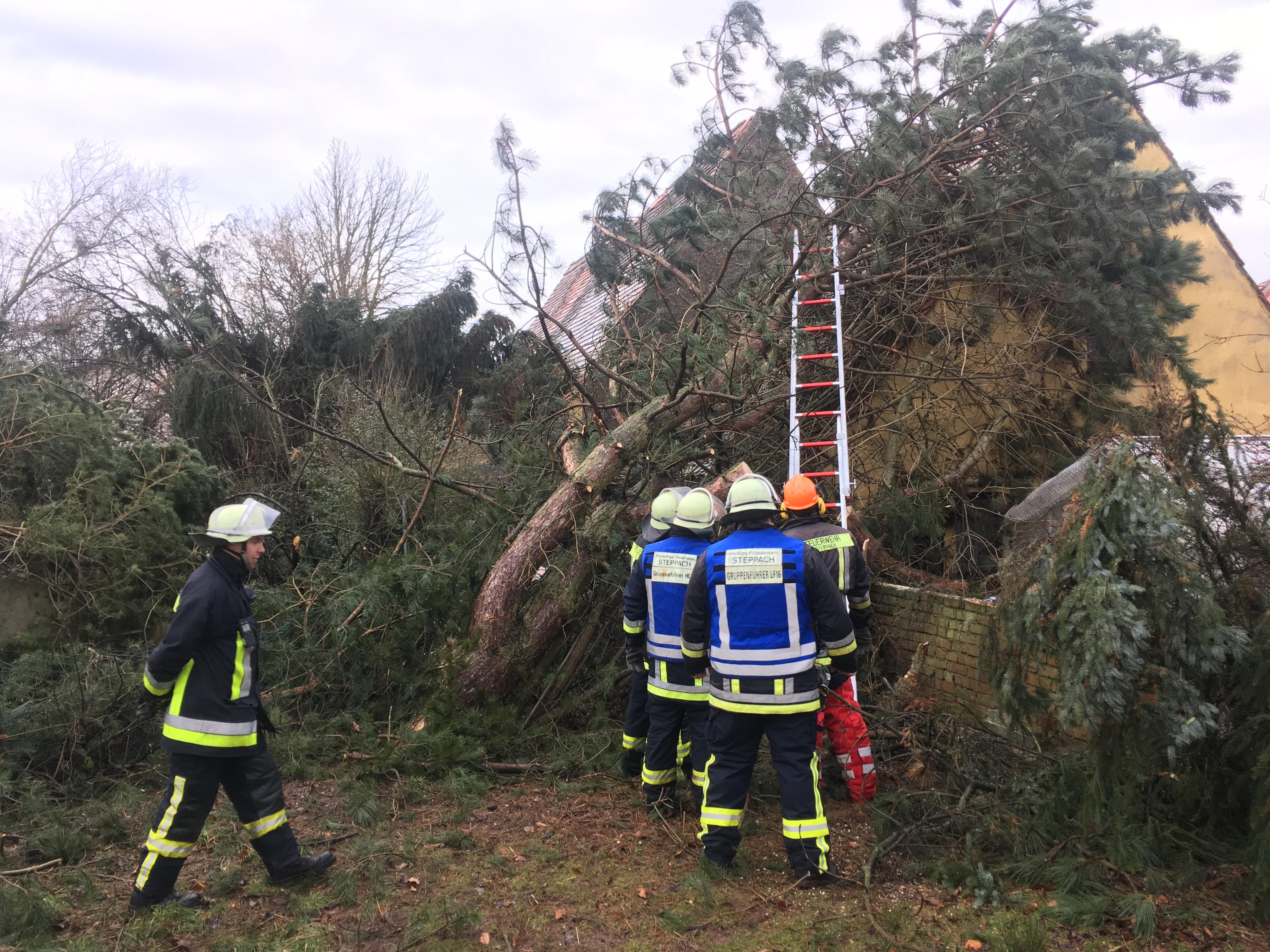 Technische Hilfeleistung vom 03.01.2018  |  (C) Feuerwehr Steppach (2018)